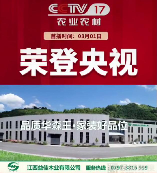华森王品牌生态板荣登央视!